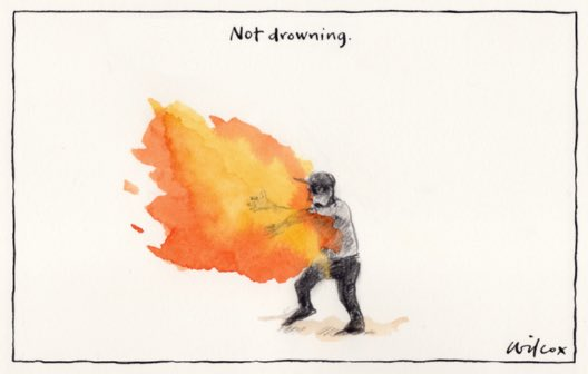 Cathy Wilcox, Sydney Morning Herald.